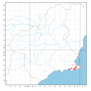 Distribución conocida de Capparis zoharyi en la Región de Murcia (UTM 1 x 1 km, 15-10-2013)